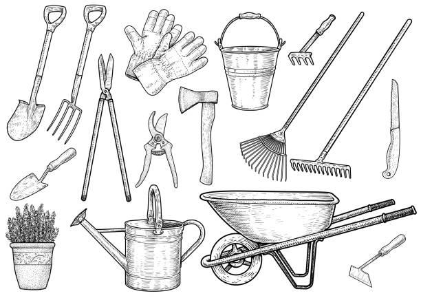 stockillustraties, clipart, cartoons en iconen met tuinaccessoires illustratie, tekening, gravure, inkt, zeer fijne tekeningen, vector - kruiwagen met gereedschap