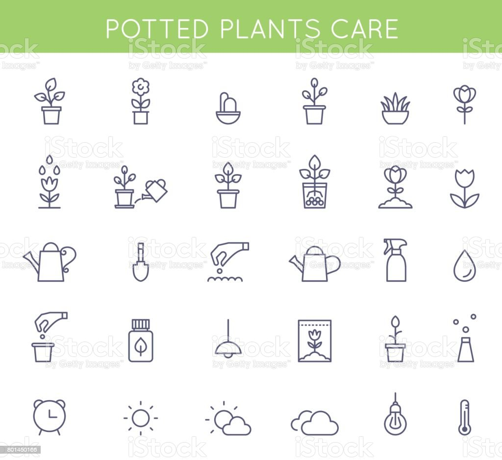 Garden and Potted Plants Care Instructions Icons and Pictograms. Vector Flat Outline Symbols vector art illustration