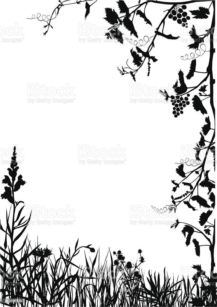 Jardín y vines ilustración de jardín y vines y más banco de imágenes de ajardinado libre de derechos