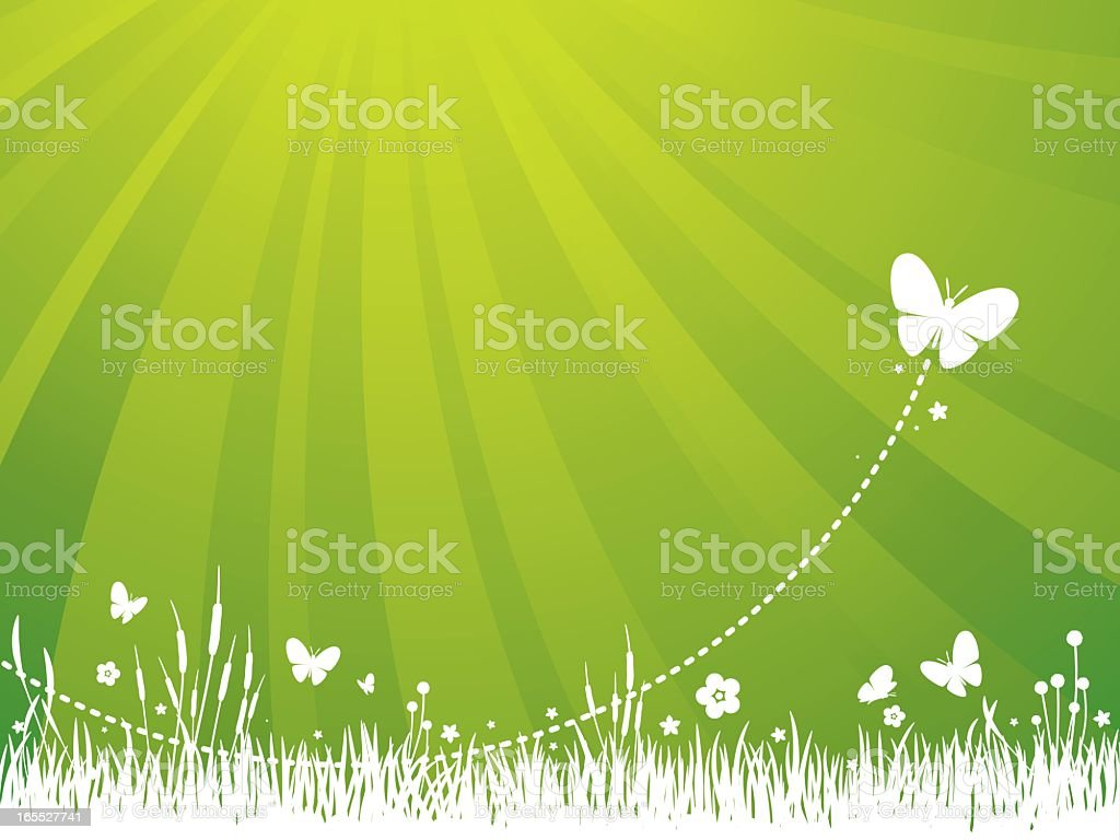 Garden Background - Green royalty-free garden background green stock vector art & more images of animal markings