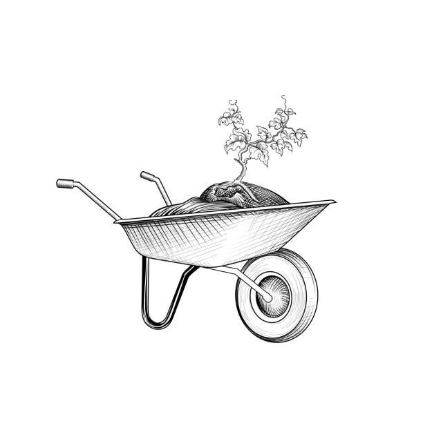 stockillustraties, clipart, cartoons en iconen met tuin kar met plant. kruiwagen met humus. tuinieren teken. - kruiwagen met gereedschap
