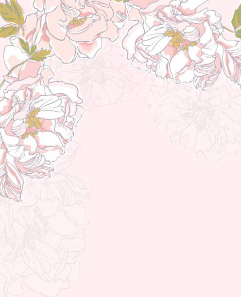 Garden Flowers. Peonies. vector art illustration