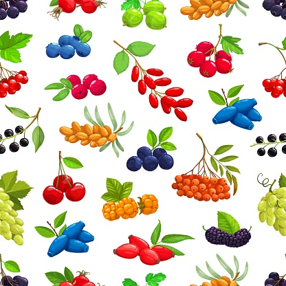 Garden, fores berries seamless pattern background