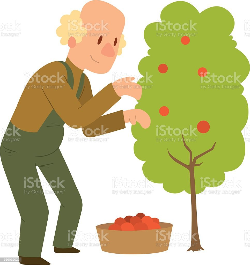 Garden harvest people vector character royalty-free garden harvest people vector character stock vector art & more images of adult