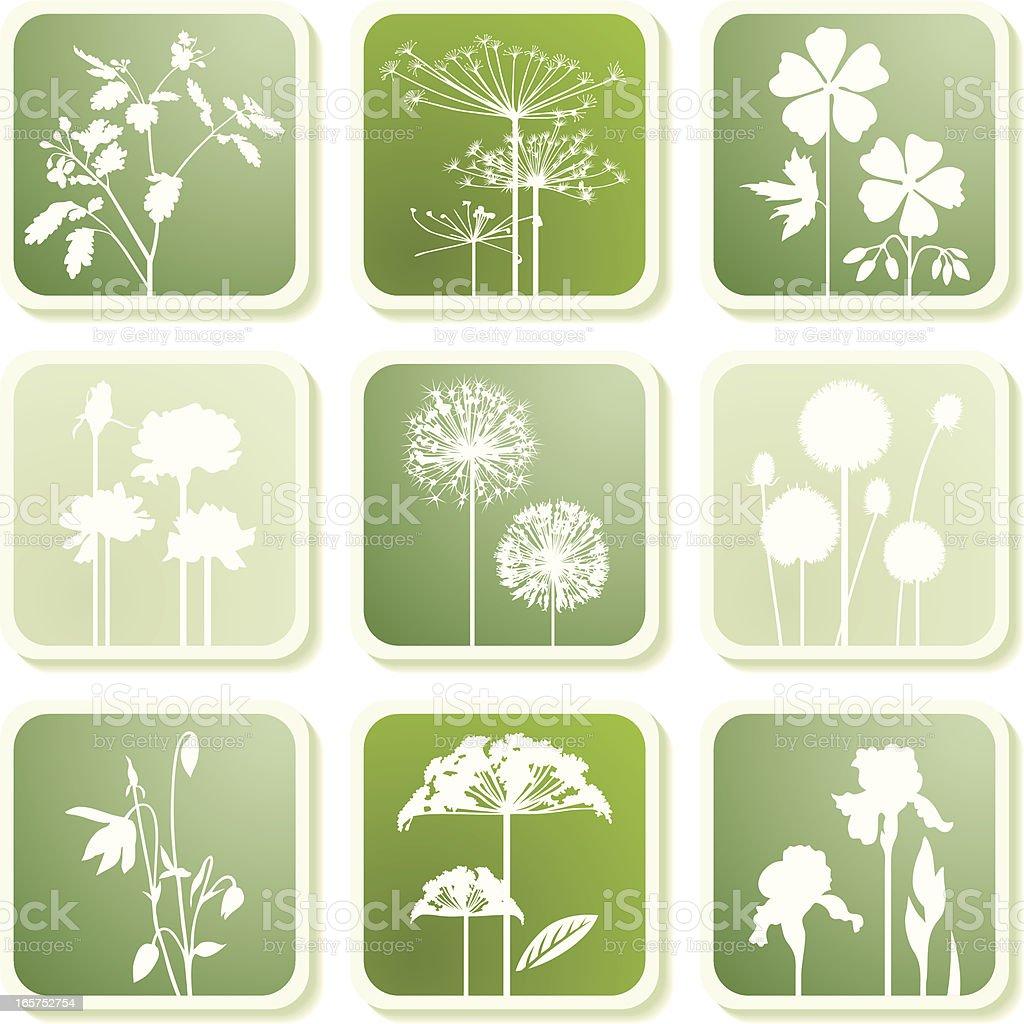 Garden plants icons II royalty-free stock vector art