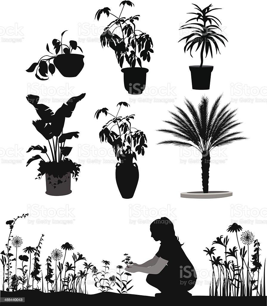 Garden Plants Vector Silhouette royalty-free stock vector art