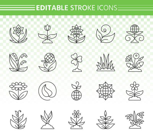 illustrazioni stock, clip art, cartoni animati e icone di tendenza di garden simple black line icons vector set - erba medica