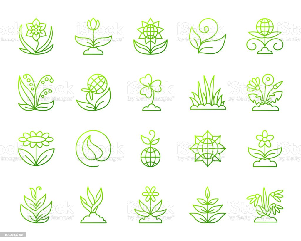 Garden simple green line icons vector set vector art illustration