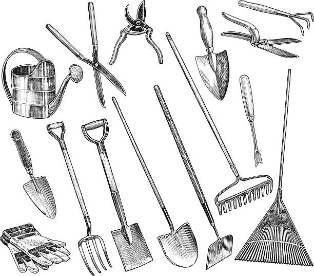 "Garden Tools - Spade, Hoe, Shovel, Trowel Garden Tools. Pen and ink illustrations of garden tools. Check out my ""Garden & Yard Tools"" light box for more. gardening equipment stock illustrations"
