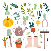 Garden tools vector gardening equipment and cute farm elements and vegetables on white background