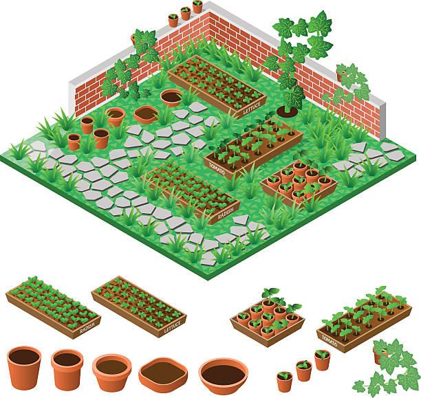 ilustrações, clipart, desenhos animados e ícones de o jardim - horta