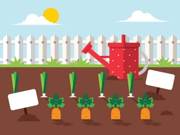 ilustrações, clipart, desenhos animados e ícones de jardim com legumes - horta