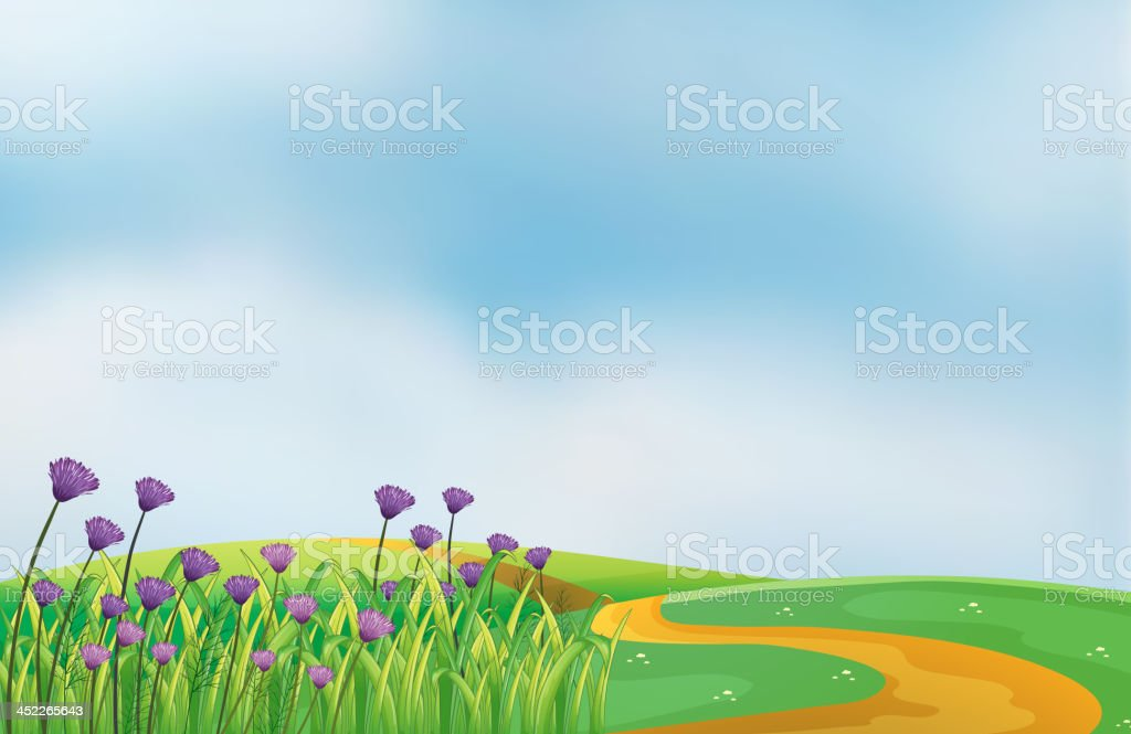 garden with violet flowers at the top of hills royalty-free stock vector art