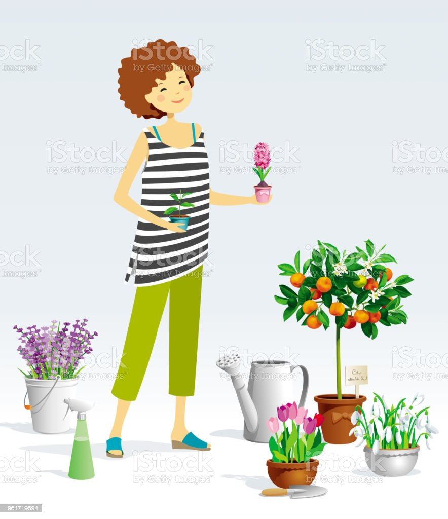 Gardener girl and vector plants royalty-free gardener girl and vector plants stock vector art & more images of adult