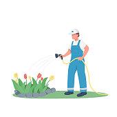 Gardener watering flowerbed