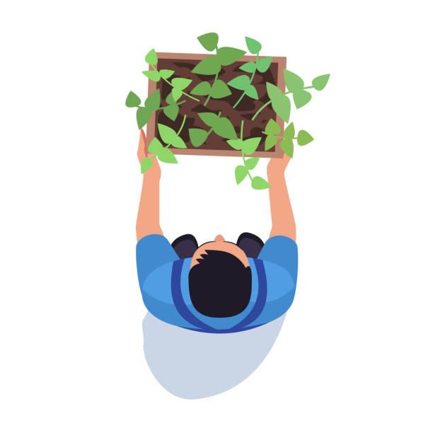 gärtner mit topf pflanze halb flach rgb-farbvektor-illustration - aerial overview soil stock-grafiken, -clipart, -cartoons und -symbole