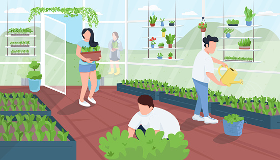 Gardeners in greenhouse flat color vector illustration