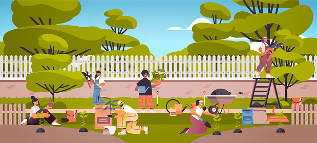gardeners taking care of plants people working together planting gardens flowers in backyard gardening concept