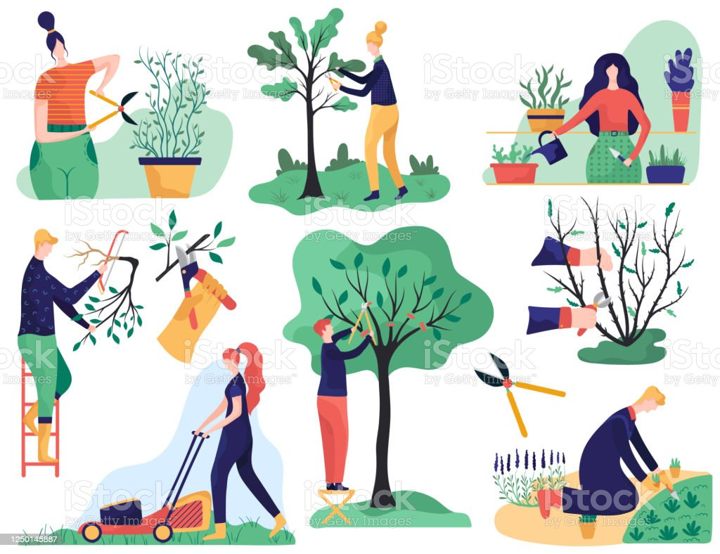 Gardening And Cutting Tree Branches Cartoon Vector Illustration Stock Illustration Download Image Now Istock Tree people figure stretching waking in the sun twisted roots. gardening and cutting tree branches cartoon vector illustration stock illustration download image now istock