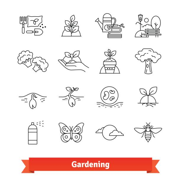 gardening and horticulture. thin line icons set - plant pod stock illustrations