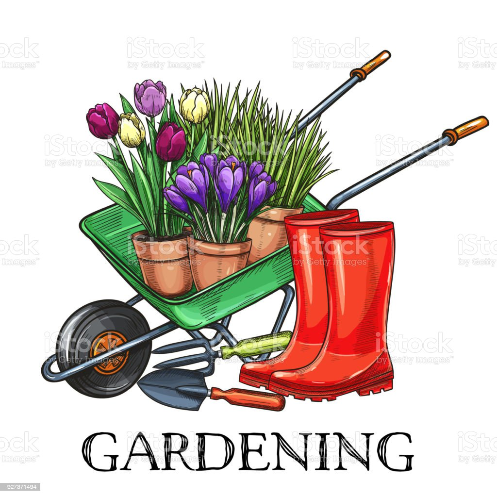 Gardening Banner Stock Illustration Download Image Now Istock