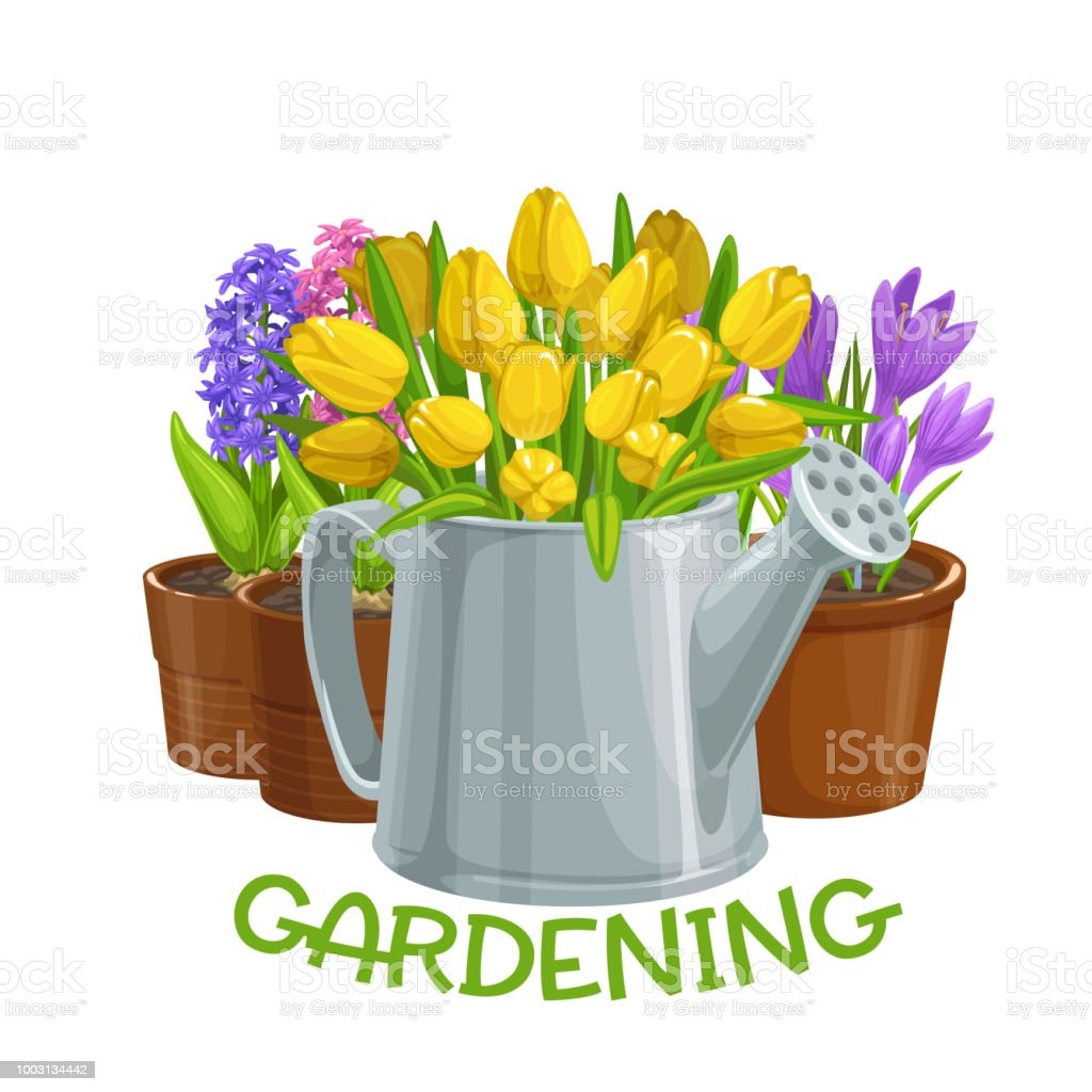 Gardening Banner With Flowers Stock Illustration Download Image Now Istock
