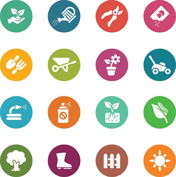 illustrazioni stock, clip art, cartoni animati e icone di tendenza di gardening circle colour harmony icons | eps10 - composting