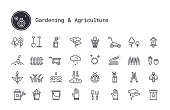 Gardening, horticulture, landscaping, working tools, equipment linear icons set. Vector clipart collection isolated on white background.