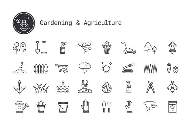 ilustrações de stock, clip art, desenhos animados e ícones de gardening, horticulture, landscaping, working tools, equipment linear icons set. vector clipart collection isolated on white background. - garden
