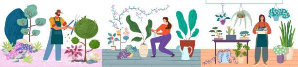 식물 벡터 일러스트 세트를 돌보는 원예 사람. 남자 가지 치기 덤불, 여성 물과 실내 식물에 대한 관심. 정원사와 꽃집 개념. - 관상용 식물 stock illustrations