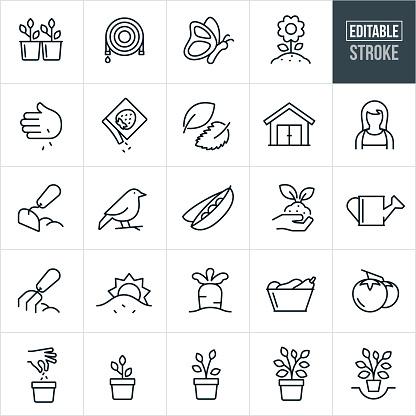 Gardening Thin Line Icons - Editable Stroke