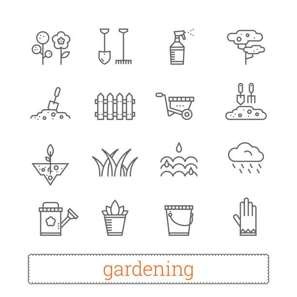 ilustraciones, imágenes clip art, dibujos animados e iconos de stock de iconos de la delgada línea de jardinería. conjunto de vector de la planta, muestras de horticultura. - backyard