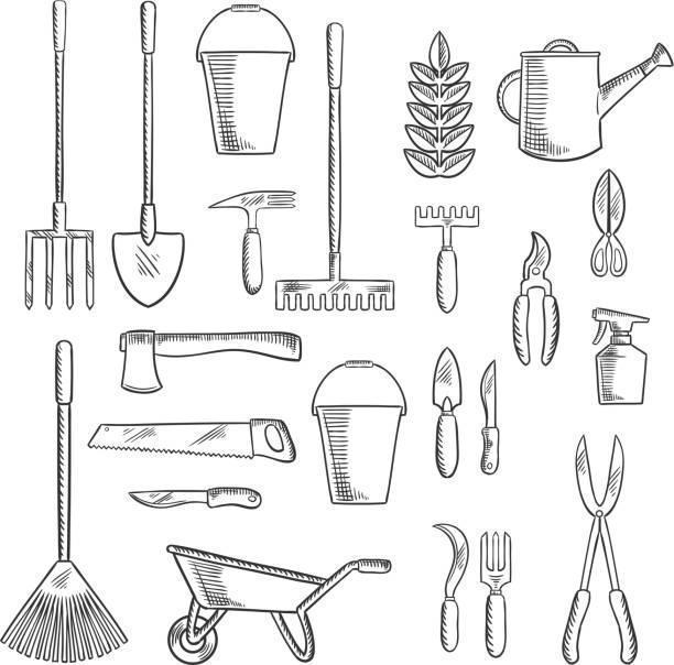 stockillustraties, clipart, cartoons en iconen met gardening tools sketches for farming design - kruiwagen met gereedschap
