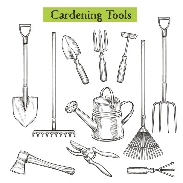 Gardening tools Gardening tools vector illustration in retro sketch style. Shovel, rake and pruner. Watering can, chopper, pruner, ax and forks. gardening equipment stock illustrations