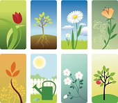 Eight detailed vignettes or symbols. This set is related to plants, flowers and gardening in general.