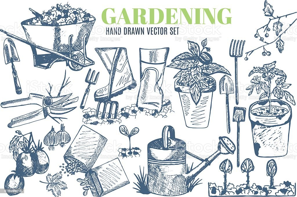 Gardening vector art illustration