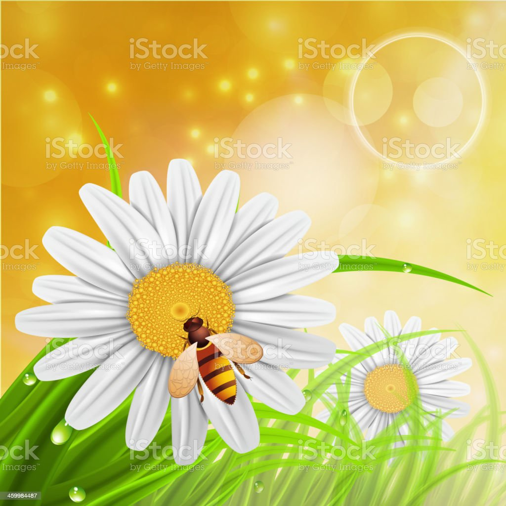 Sammeln nectar – Vektorgrafik