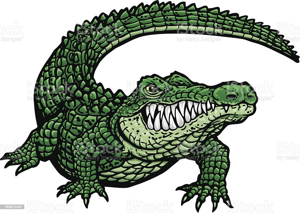 Gator G - Illustration vectorielle