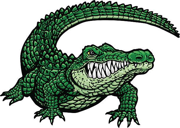 gator g - alligator stock illustrations