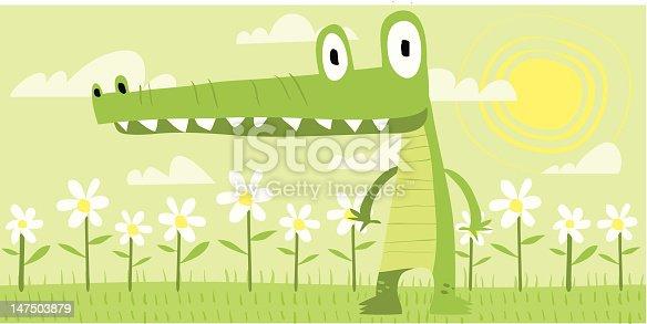 istock Gator Steve 147503879