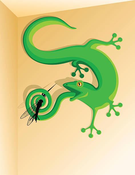 gecko gefangene ein moskito - mückenfalle stock-grafiken, -clipart, -cartoons und -symbole