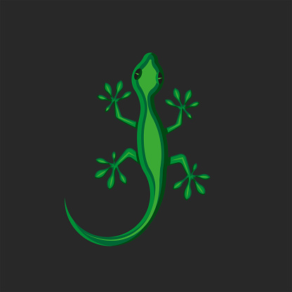 Gecko logo green lizard creative animal vector illustration isolated on black background