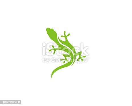 Gecko logo green vector