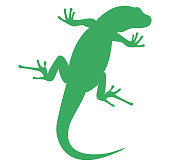 vector file of gecko silhouette
