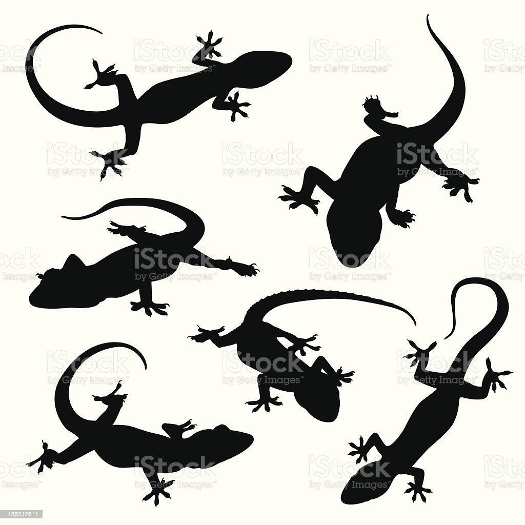 Gecko silhouettes vector art illustration