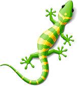 Vector illustration of a gecko. No Mesh tool.