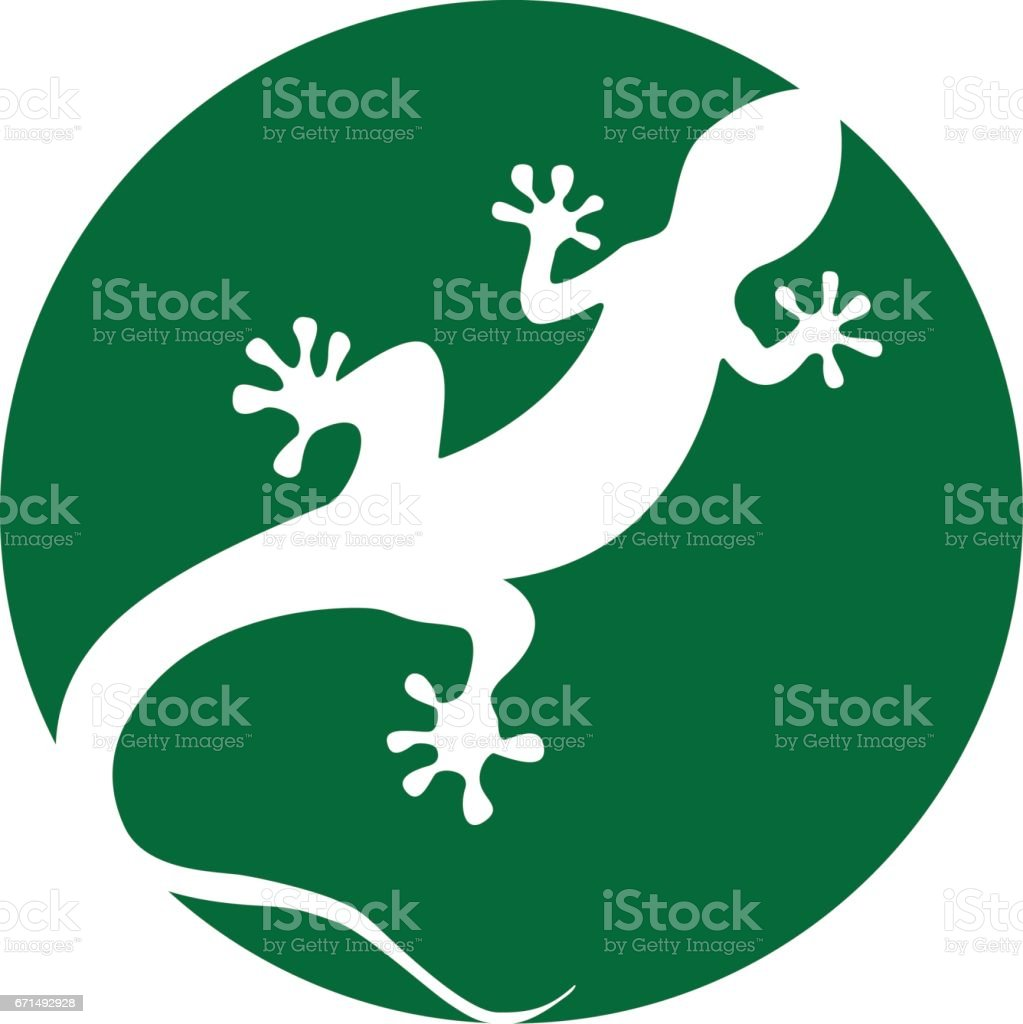 royalty free white line gecko clip art, vector images