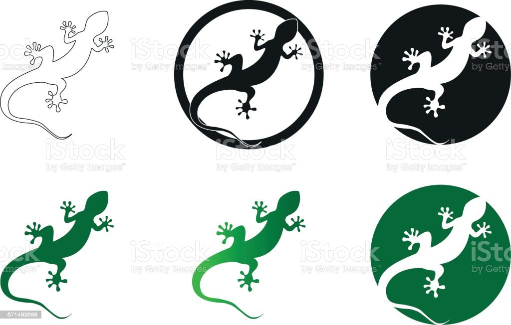 Gecko vector illustration isolated on a white background vector art illustration