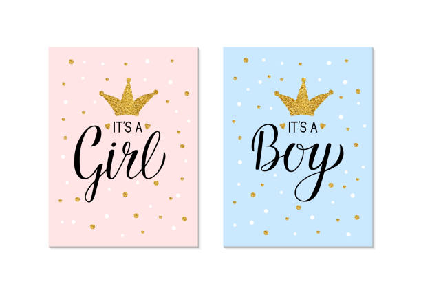 Gender Reveal banners It's a Girl and It's a Boy. Calligraphy lettering with gold glitter crown and confetti. Vector template for Baby shower party decoration, invitation, announcement ,  poster, etc. Gender Reveal banners It's a Girl and It's a Boy. Calligraphy lettering with gold glitter crown and confetti. Vector template for Baby shower party decoration, invitation, announcement ,  poster, etc. baby shower stock illustrations