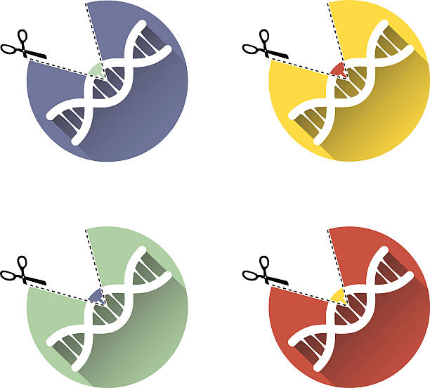 Gene Editing Technology vector art illustration